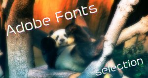 フォント巡り旅 -Adobe Fonts編-