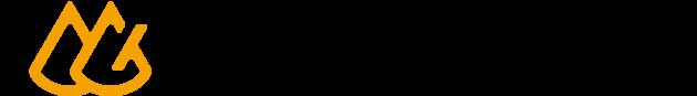 株式会社D-Gripシステム